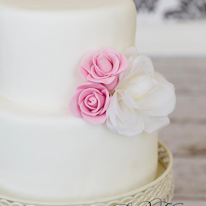 Cake photography   Dover, DE   Tiffanee & Co. Bakery